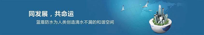 蓝盾之星科技有限公司
